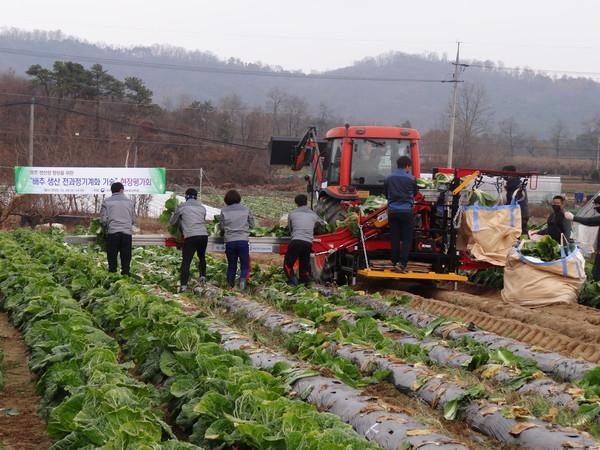 배추수확기